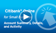 Citi Online for Small Business-Account Summary, Details, and Activity